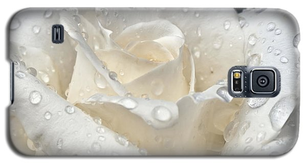 White Rose After The Rain Galaxy S5 Case