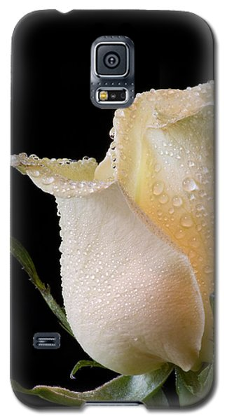 White Rose Close-up Galaxy S5 Case