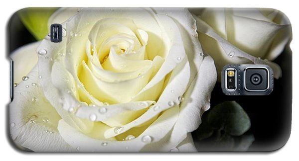 White Rose Galaxy S5 Case by Dave Files
