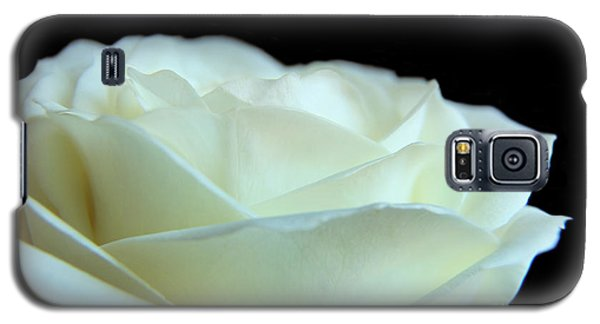 White Avalanche Rose Galaxy S5 Case
