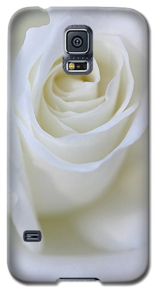 White Rose Floral Whispers Galaxy S5 Case