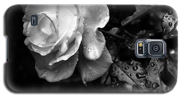 White Rose Full Bloom Galaxy S5 Case