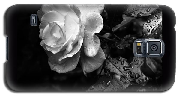 White Rose Full Bloom Galaxy S5 Case