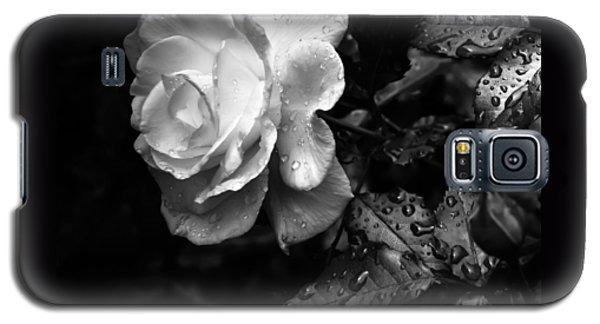 White Rose Full Bloom Galaxy S5 Case by Darryl Dalton