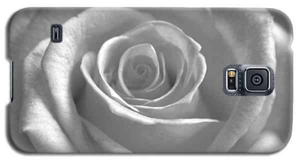 White Rose Glooming Galaxy S5 Case by Silke Brubaker