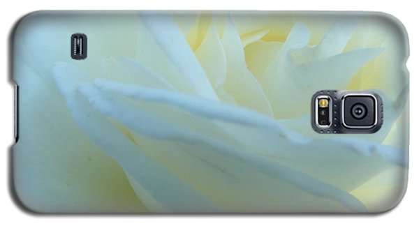 White Rose Galaxy S5 Case