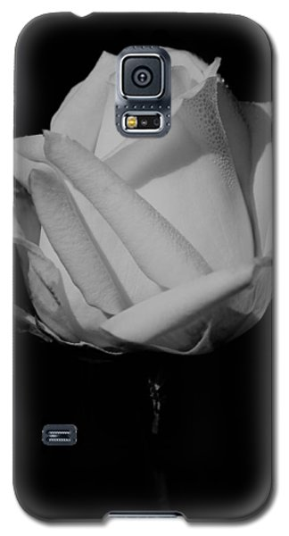 White Rose Galaxy S5 Case
