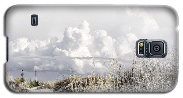 White Sands Winter Galaxy S5 Case