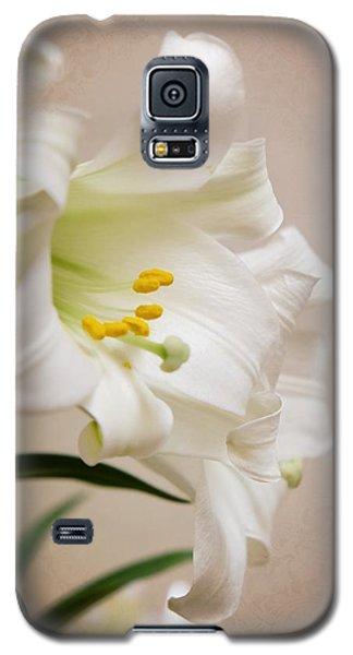 White Softness Galaxy S5 Case
