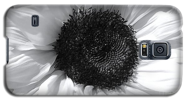 Galaxy S5 Case featuring the photograph White Sunflower by Jeannie Rhode