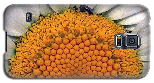 White Sunflower Galaxy S5 Case