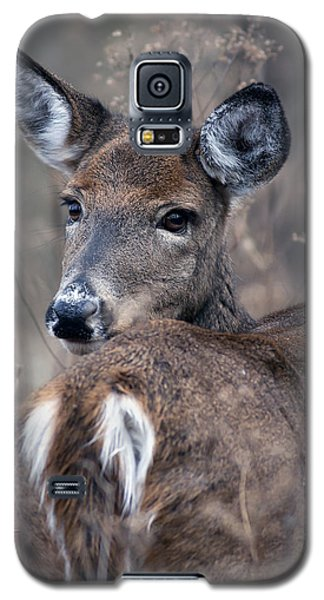 Galaxy S5 Case featuring the photograph White-tail Beauty by Timothy McIntyre