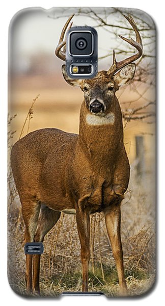 White-tail Buck Galaxy S5 Case