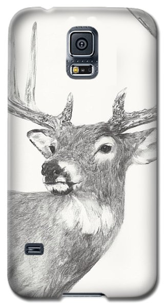White Tailed Buck Study Galaxy S5 Case