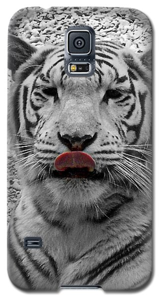 White Tiger Lick Galaxy S5 Case by Suzy Piatt