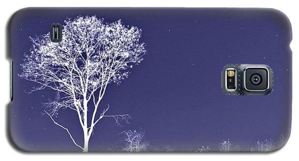 White Tree - Blue Sky - Silver Stars Galaxy S5 Case