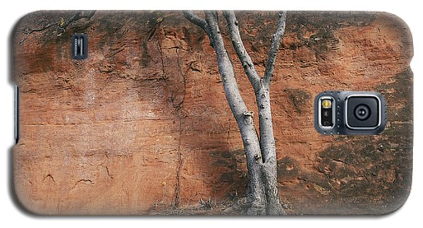 White Tree And Red Rock Face Galaxy S5 Case