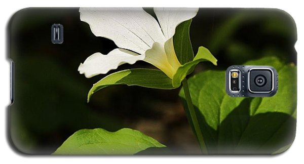 Galaxy S5 Case featuring the photograph White Trillium by Al Fritz