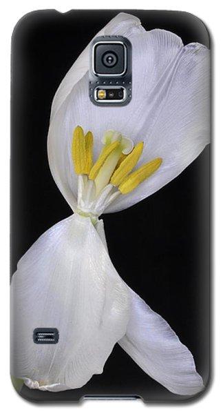 White Tulip On Black Galaxy S5 Case