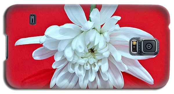 White Flower On Bright Red Background Galaxy S5 Case