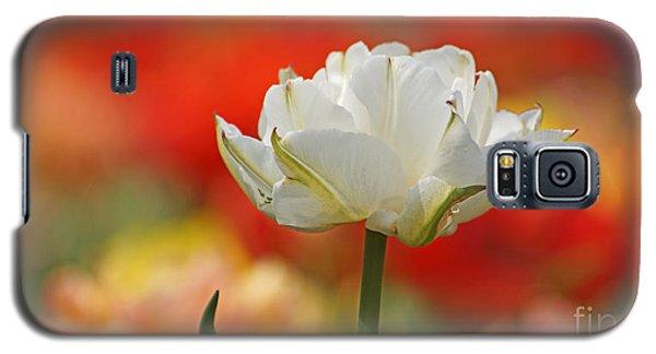 White Tulip Weisse Gefuellte Tulpe Galaxy S5 Case