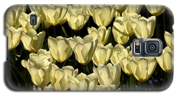 Galaxy S5 Case featuring the photograph White Tulips by Inge Riis McDonald