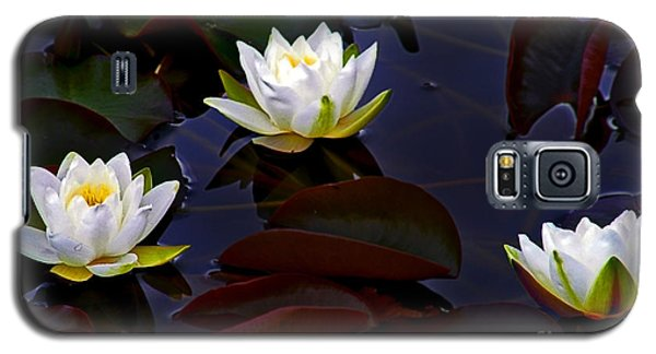 White Water Lilies Galaxy S5 Case by Nina Ficur Feenan