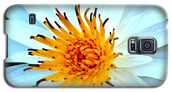 Galaxy S5 Case featuring the photograph White Water Lilly II by Jodi Terracina