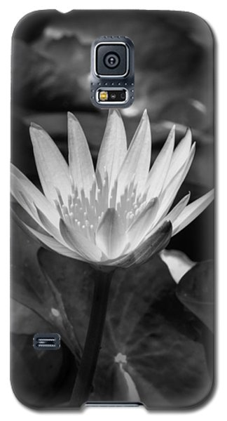 Galaxy S5 Case featuring the photograph White Water Lily 001 Bw by Lance Vaughn