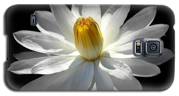 Galaxy S5 Case featuring the photograph White Water Lily #2 by Lisa L Silva