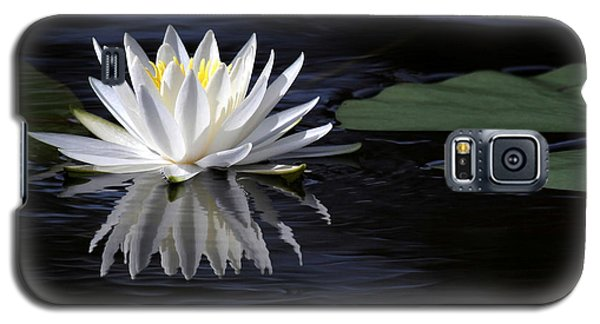 White Water Lily Left Galaxy S5 Case