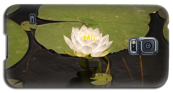 Galaxy S5 Case featuring the photograph White Water Lily by Mark McReynolds