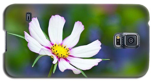White Wildflower Galaxy S5 Case by Joan Herwig