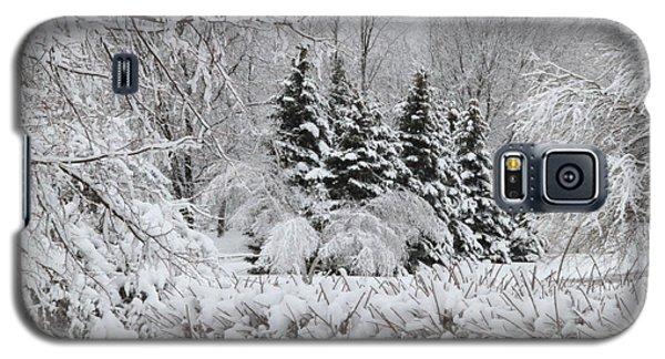 White Winter Day Galaxy S5 Case