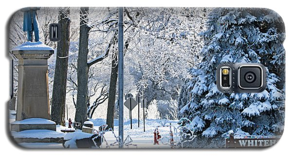 Whitehouse Village Park  7360 Galaxy S5 Case