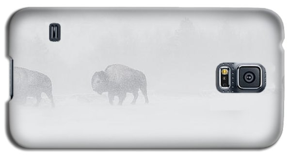 Whiteout Galaxy S5 Case