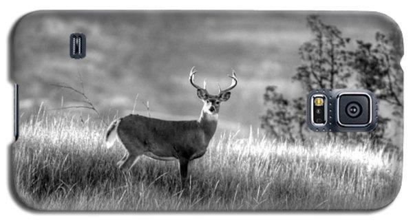 Whitetail Buck B/w Galaxy S5 Case by Kevin Bone