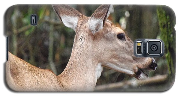 Whitetail Deer 038 Galaxy S5 Case by Chris Mercer