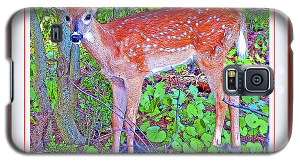 Galaxy S5 Case featuring the photograph Whitetailed Deer Fawn In A Forest  by A Gurmankin