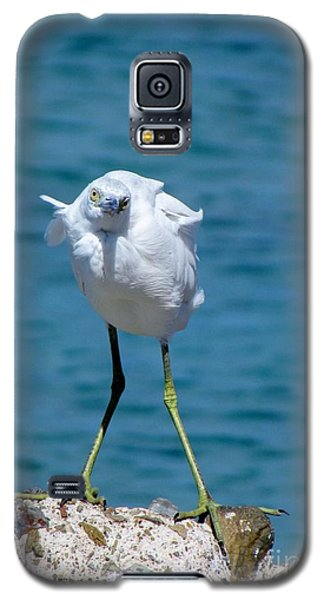 Who You Lookin At? Galaxy S5 Case