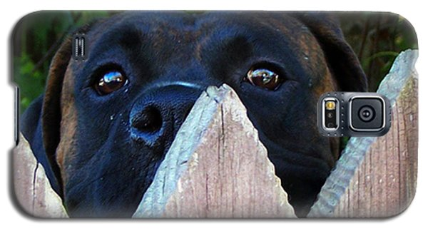 Galaxy S5 Case featuring the photograph Who's There by B Wayne Mullins