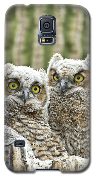 Who's There? Galaxy S5 Case by Bryan Keil
