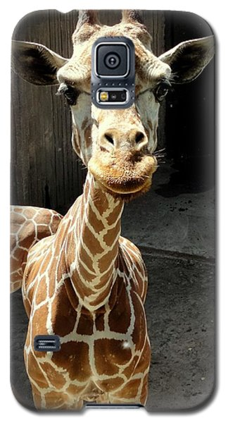 Why The Long Neck? Galaxy S5 Case