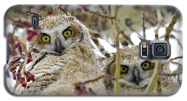 Wide-eyed Wonders Galaxy S5 Case