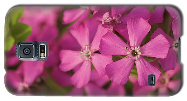 Galaxy S5 Case featuring the photograph Wild About Pink - Pink Wildflower Art Print by Jane Eleanor Nicholas
