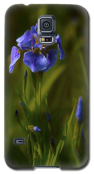 Wild Alaskan Iris Galaxy S5 Case by Penny Lisowski
