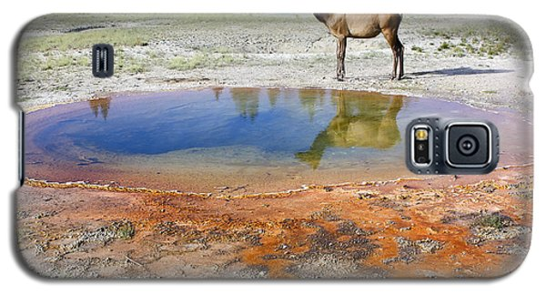 Galaxy S5 Case featuring the photograph Wild And Free In Yellowstone by Teresa Zieba