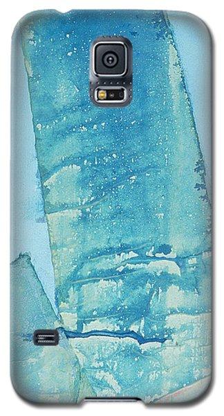 Wild Blue Waves Galaxy S5 Case by Asha Carolyn Young