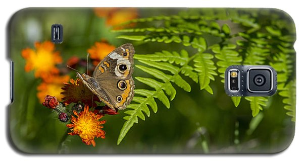 Wild Buckeye Camouflage Galaxy S5 Case