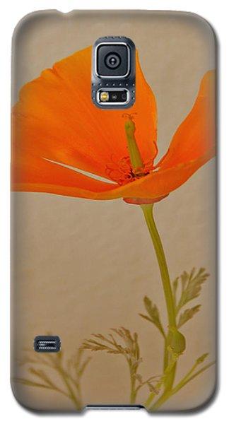 Wild California Poppy No 1 Galaxy S5 Case